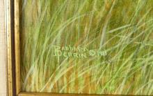 TORTOISESHELL CARD CASE & FRAME