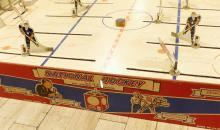 TABLE-TOP HOCKEY GAME